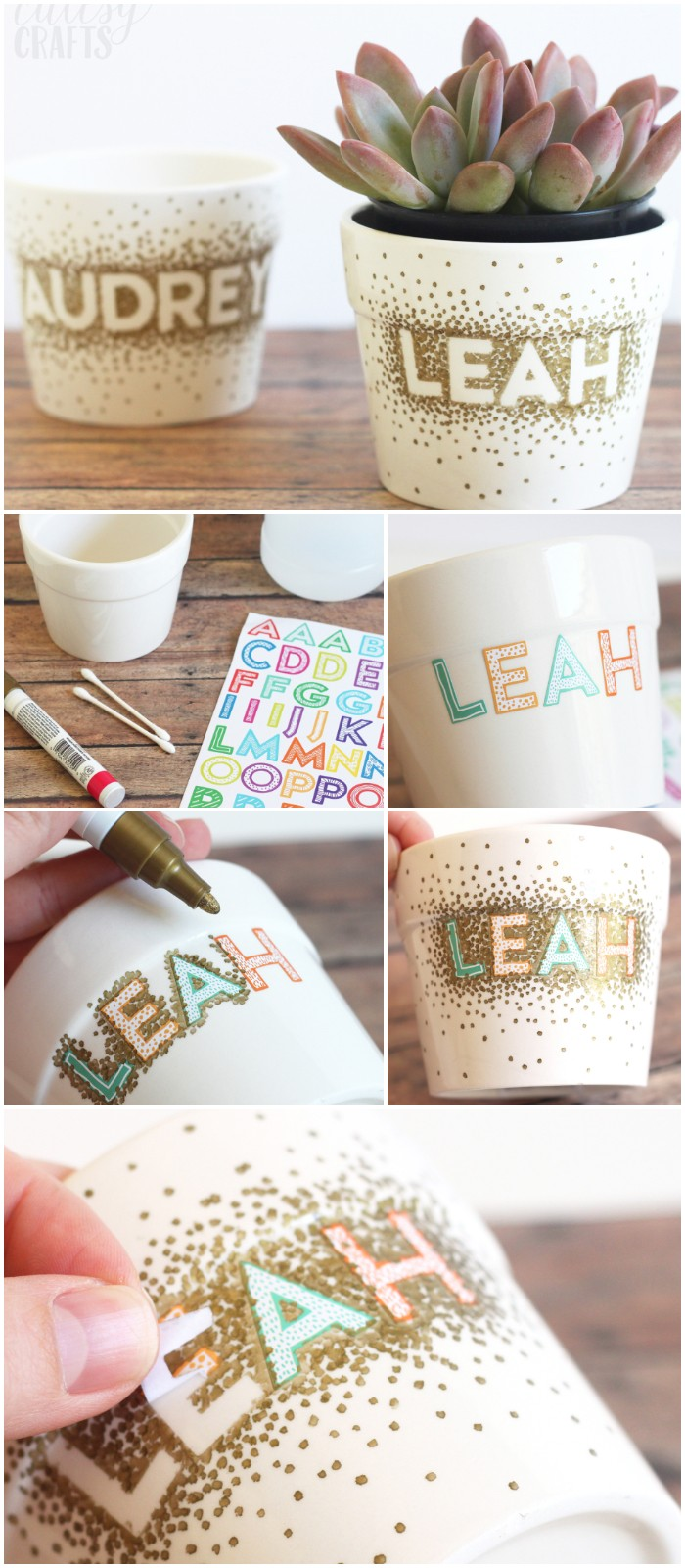 DIY Sharpie Flower Pot Craft