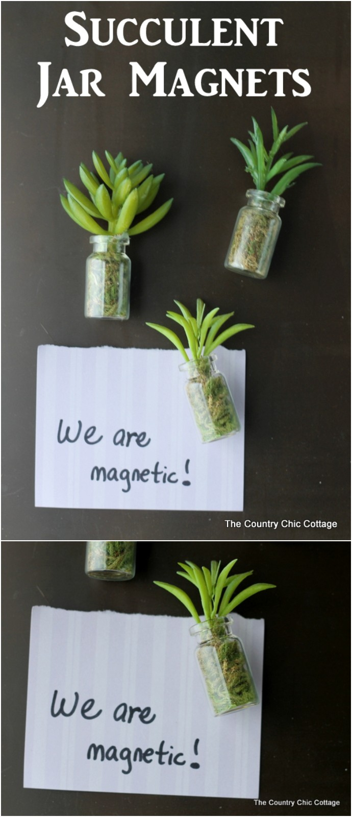 DIY Succulent Jar Magnets