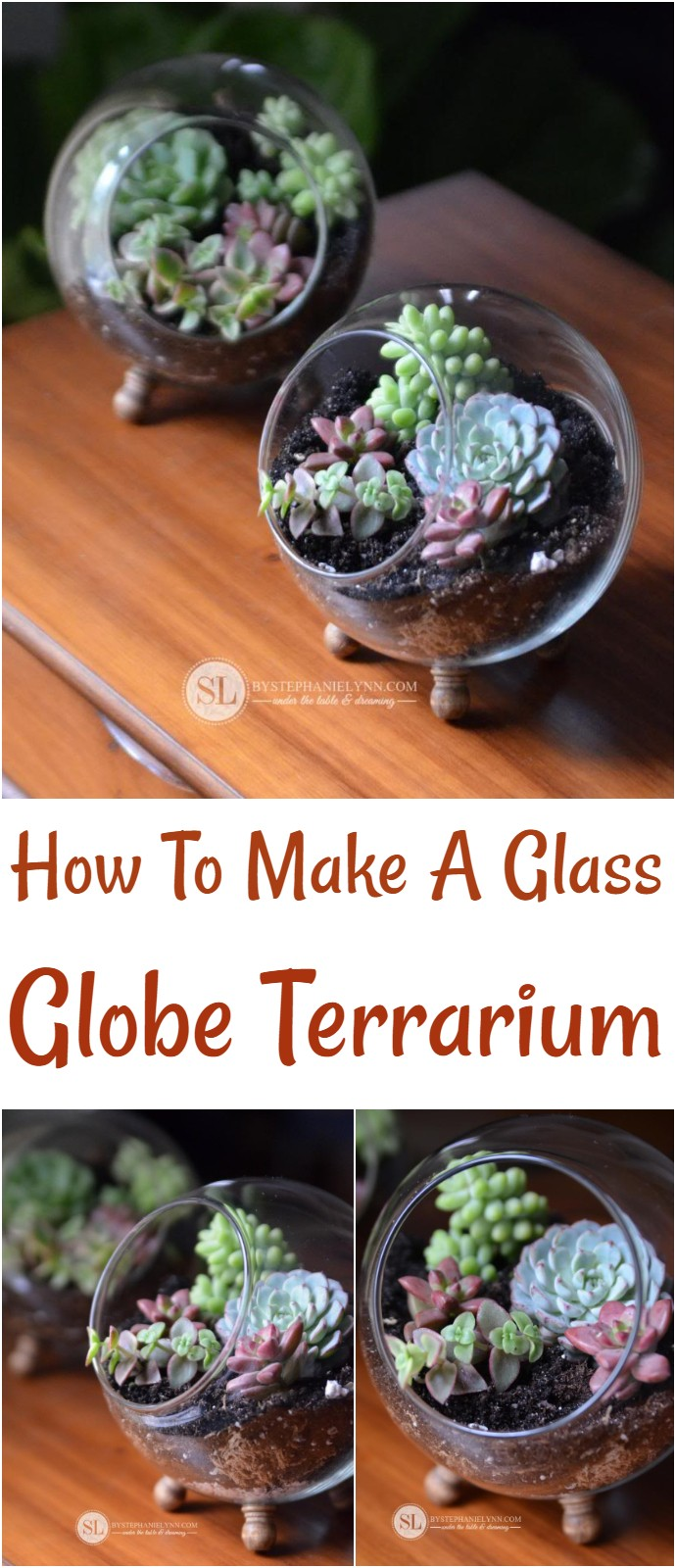 How To Make A Glass Globe Terrarium