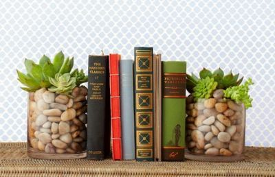Make A Shelf With DIY Succulent Bookends