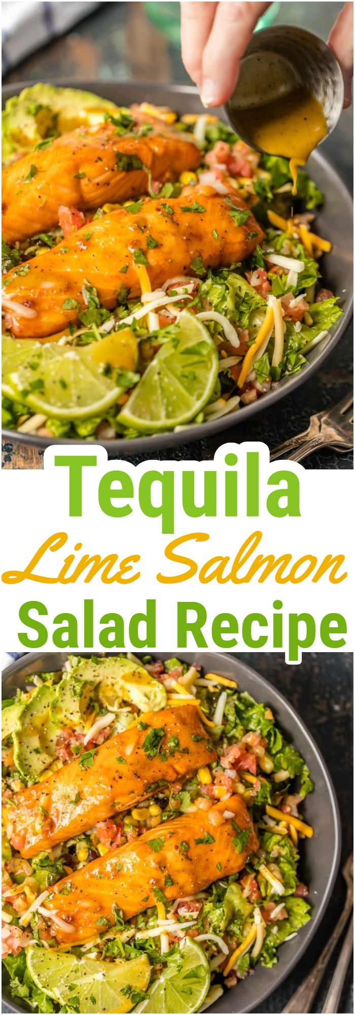 Tequila Lime Salmon Salad Recipe