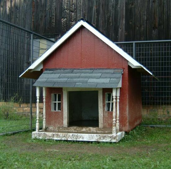 'In The Dog House' Project