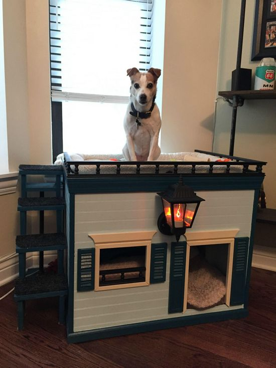 Build The DIY Indoor Dog House