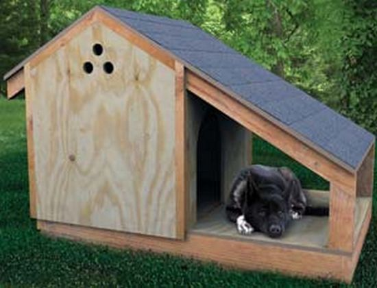 Building a Doghouse Step by Step