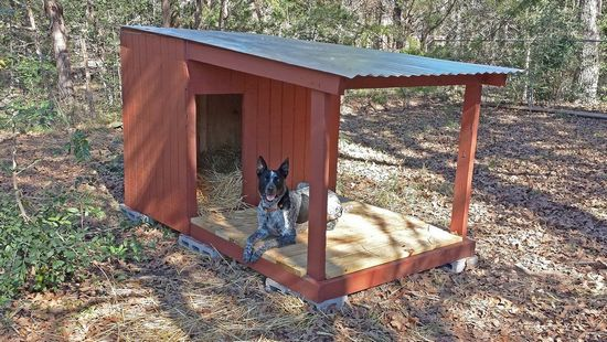 DIY Country Dog House with Porch