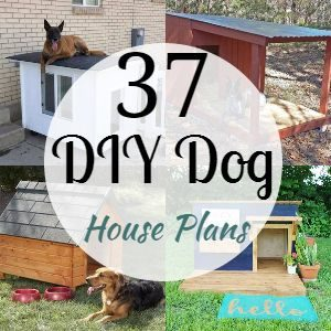 37 DIY Dog House Plans