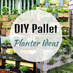 DIY Pallet Planter Ideas