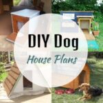 DIY Dog House Plans That Are Completely Free (Video Tutorial)