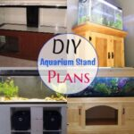 10 Free DIY Aquarium Stand Plans (Budget-Friendly)