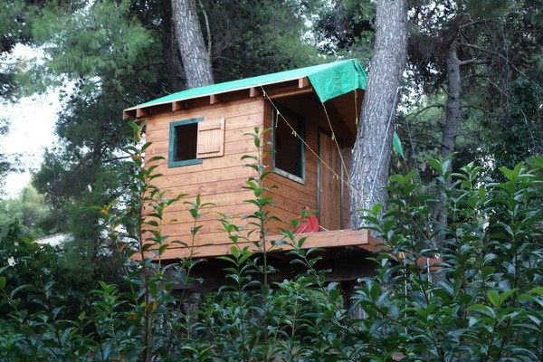 DIY Treehouse On Two Trees