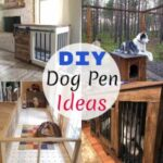 15 Homemade Free DIY Dog Pen Ideas And Plans
