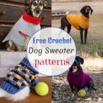 Warm Free Crochet Dog Sweater Patterns